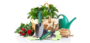 shop for gardening products